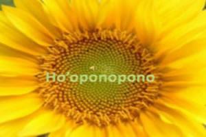 Meditación hooponopono