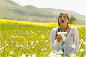 Remedios contra las alergias